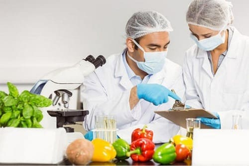 B.Tech Food Technology Course