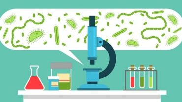 Microbiology Course India